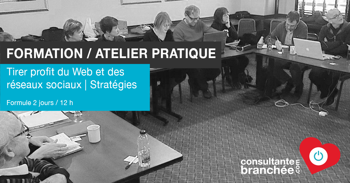 consultantebranchee-Formation-Aelier-Strategies-Web-RS-12-h-image-a-la-uneb