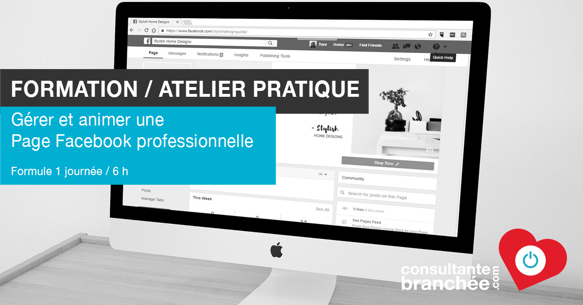 Edith Jolicoeur Consultante branchée Formation Atelier Page Facebook Professionnelle