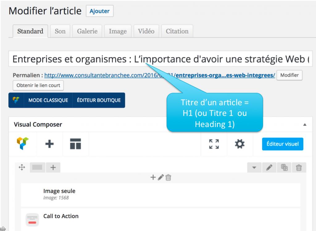 1 Exemple de balises texte dans WordPress