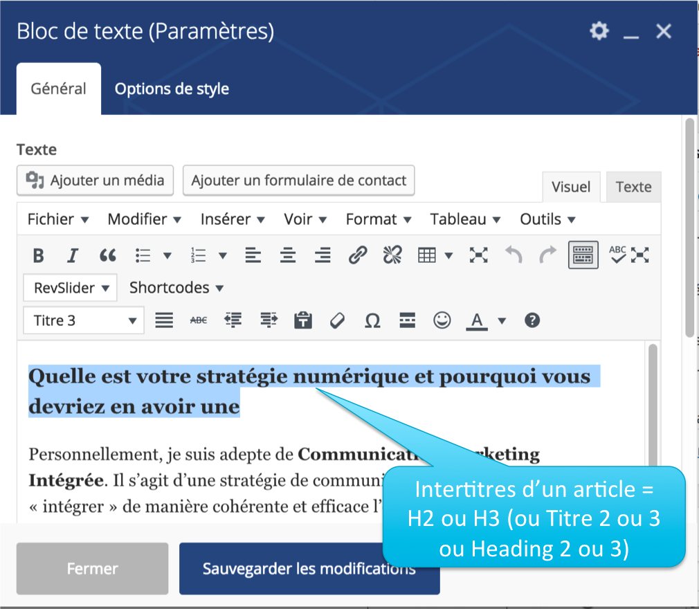 2 Exemple de balises texte dans Wordpress