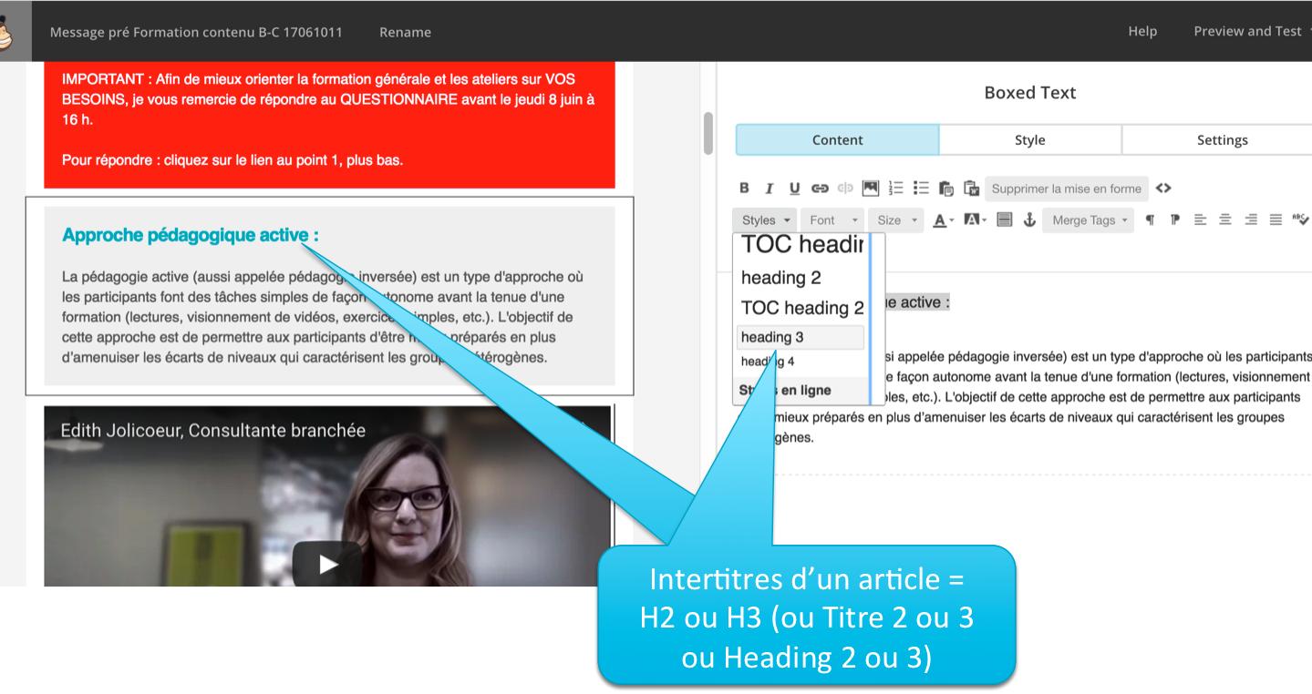 3 Exemple de balises texte dans MailChimp