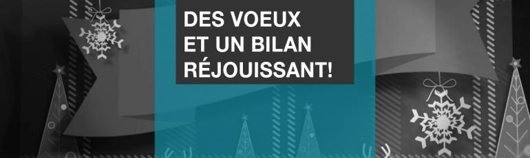 Edith Jolicoeur Consultante branchee Voeux et Bilan 2017